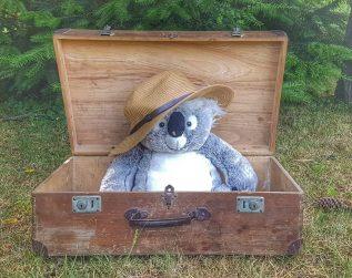 Koffer packen - Packliste - Salty toes Reiseblog