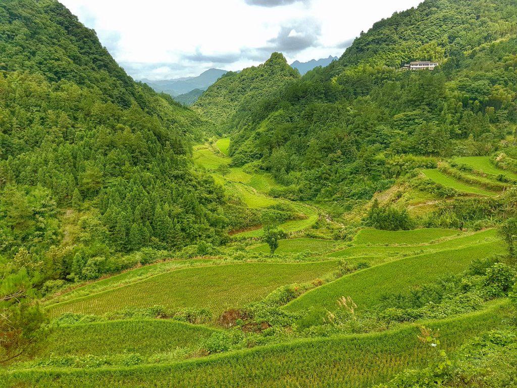 No. 5 Valley Inn Zhangjiajie
