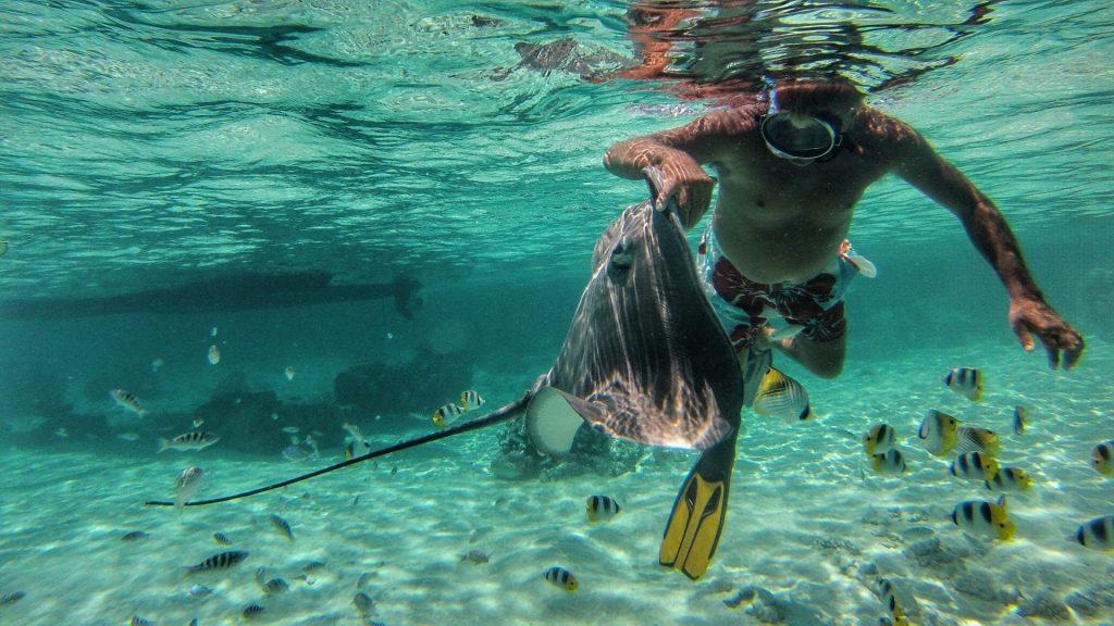 Unterwasserwelt Bora Bora - Reisetipps - Südsee Salty toes Reiseblog