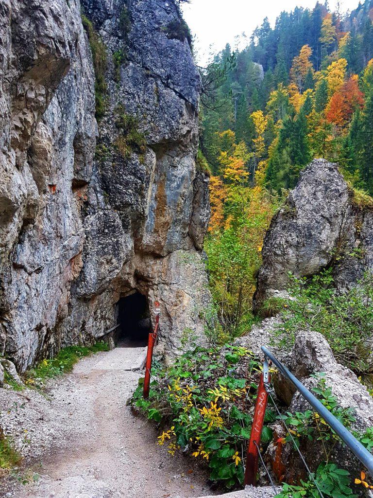 Naturpark Ötscher Tormäuer (9)-min - Salty toes Reiseblog