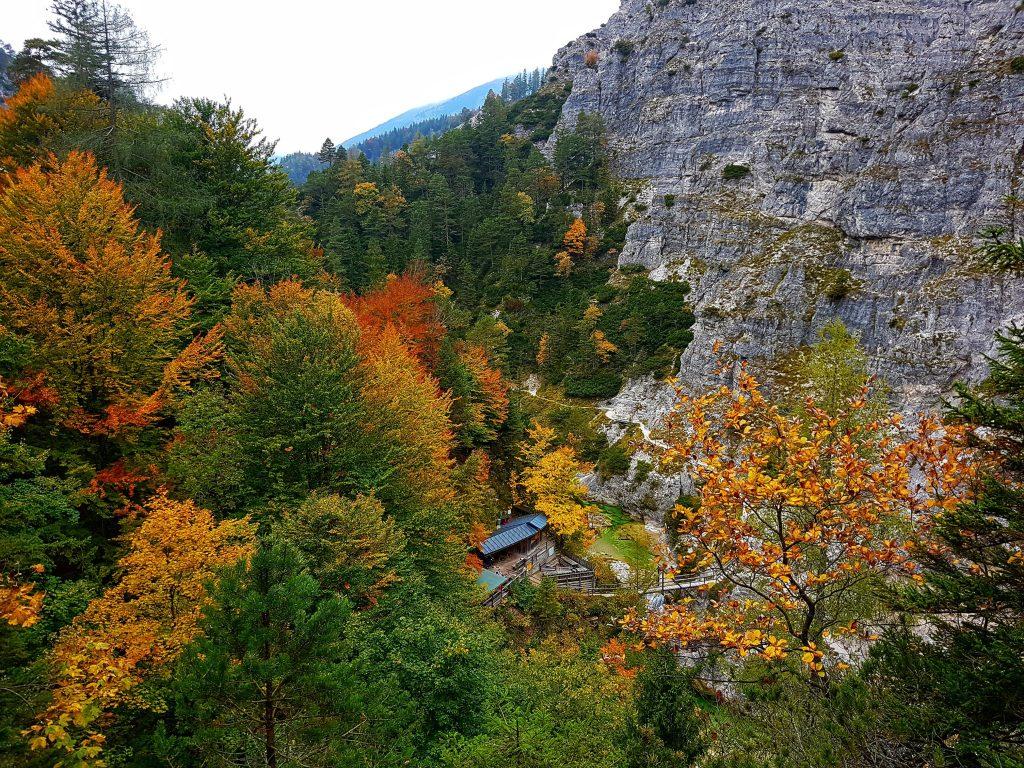 Naturpark Ötscher Tormäuer (9)-min