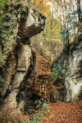 Steinwandklamm - Das schönste Ausflugsziel in Niederösterreich