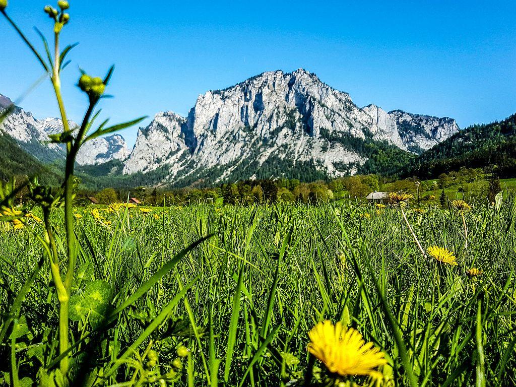 Ausflugstipp: Grüner See - Der schönste See in der Steiermark