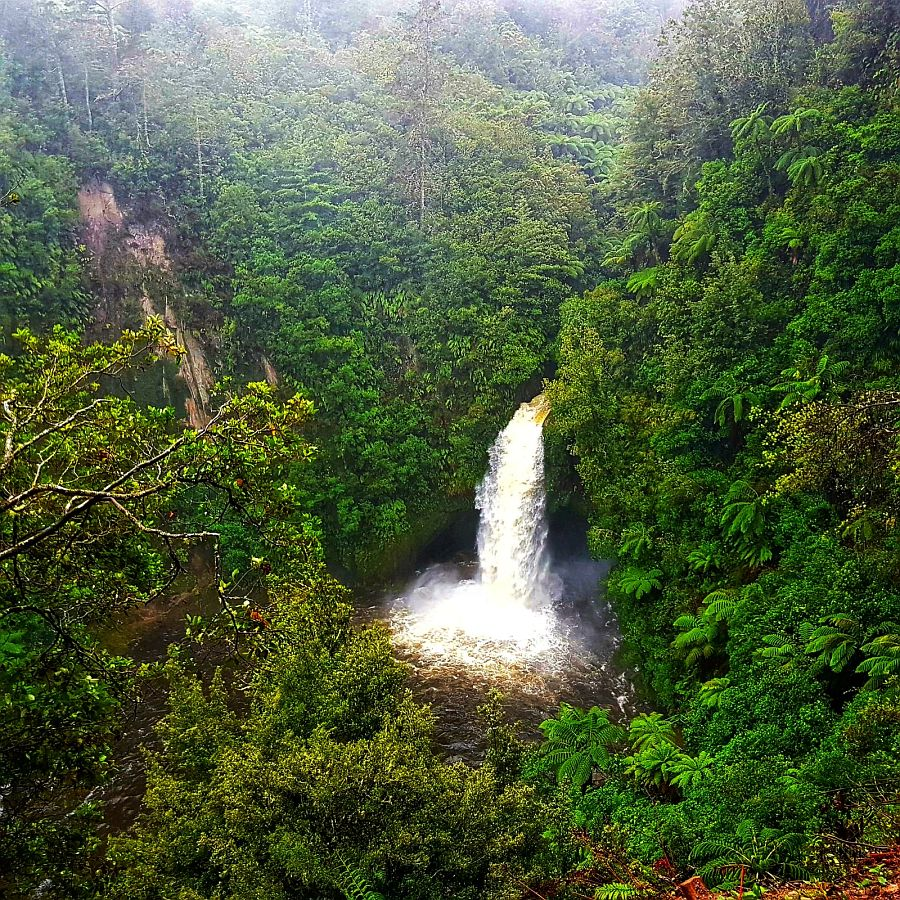 Neuseeland Wasserfall - Salty toes Reiseblog