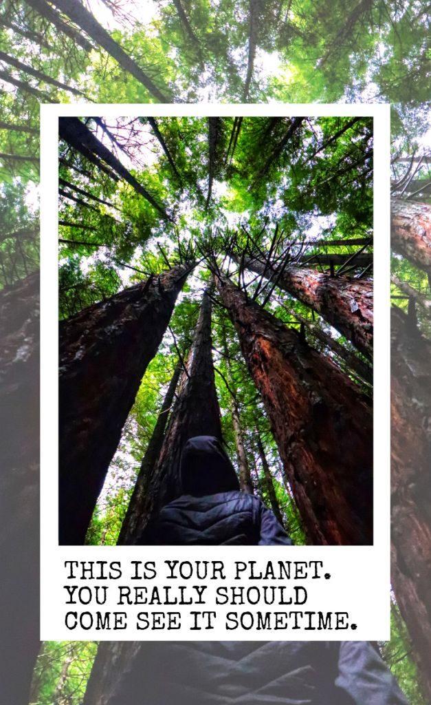Reisespruch Reisezitate - Salty toes Reiseblog