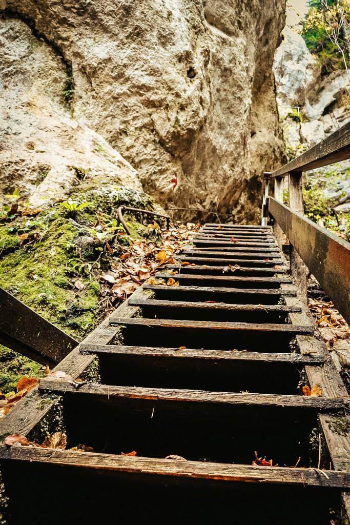 Steinwandklamm - Wandern & Natur. Ein ganz besonderes Ausflugsziel in Niederösterreich!