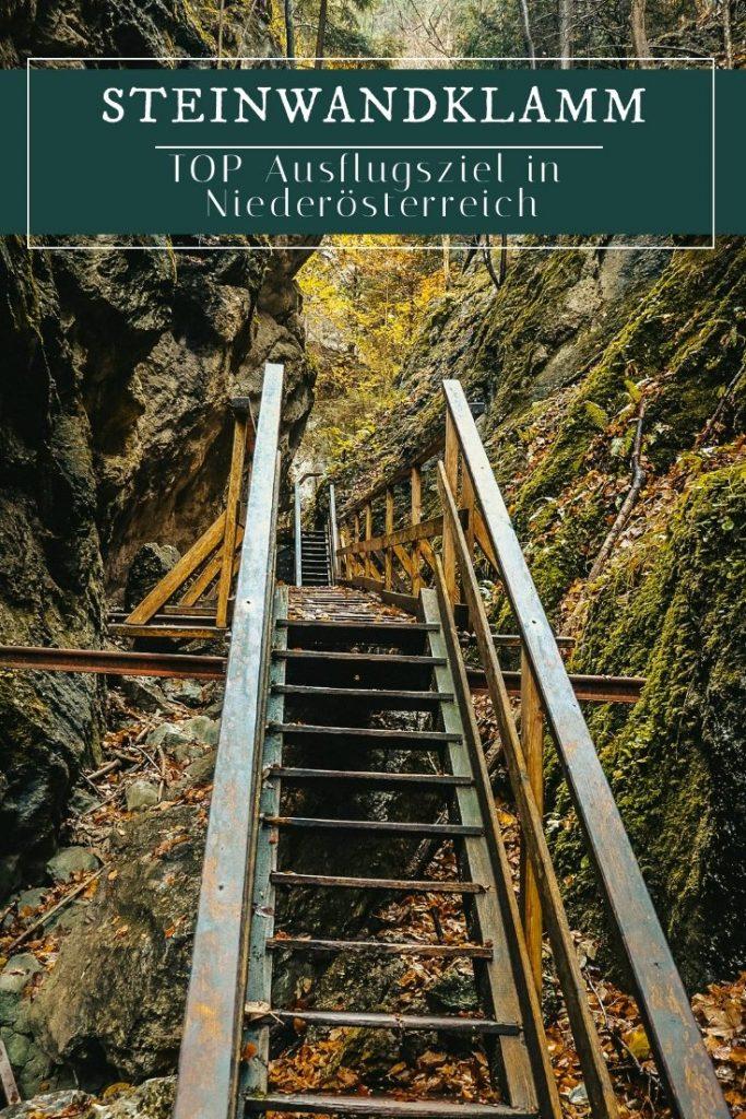 Steinwandklamm - Das schönste Ausflugsziel in Niederösterreich!