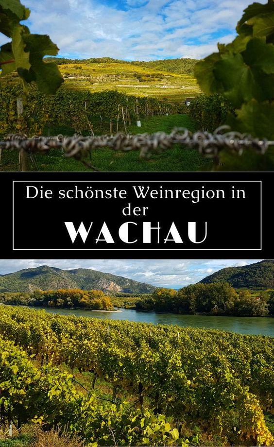 Wachau - Die schönste Weinregion in Niederösterreich